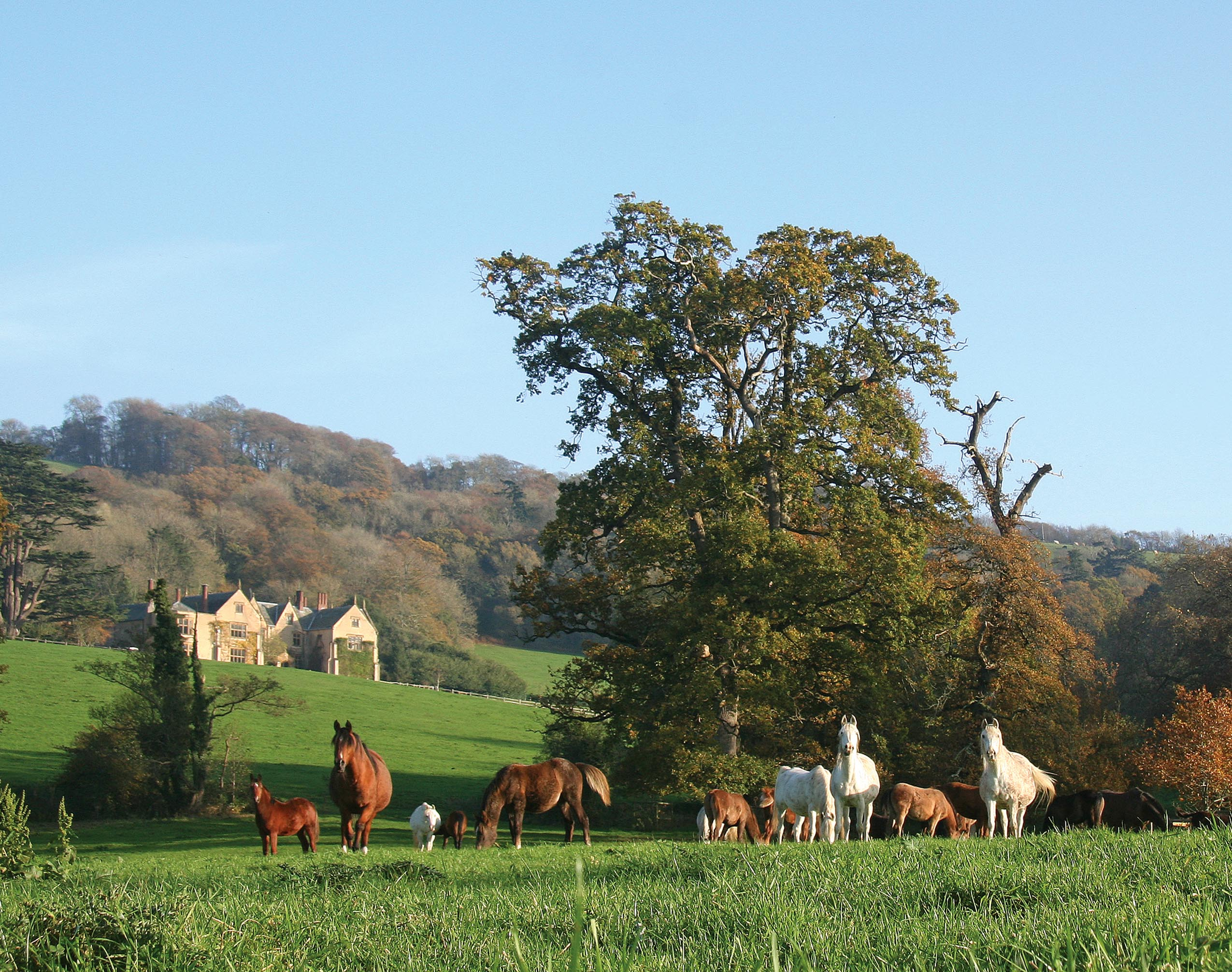 Raise a glass of Devonshire cider to an Indian Summer Autumn Escape