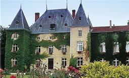 Chateau d'Adomenil